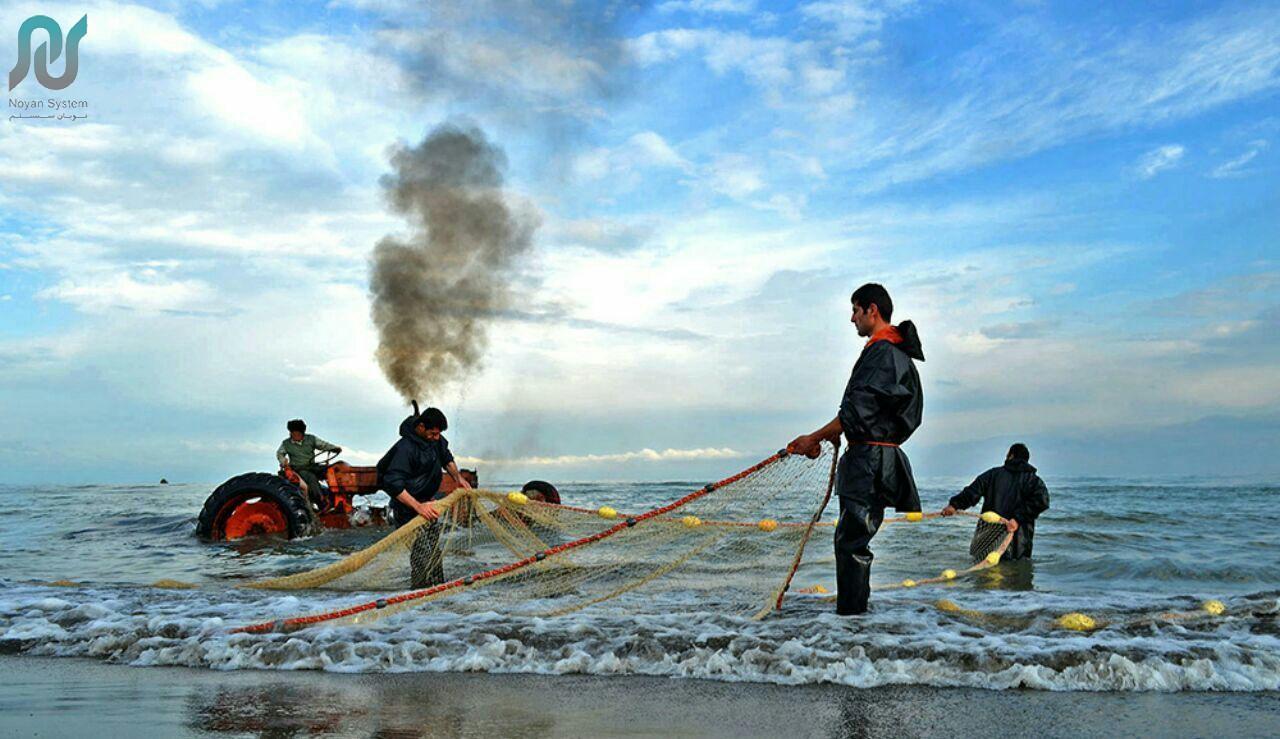 بیمه صیادان و ماهیگیران