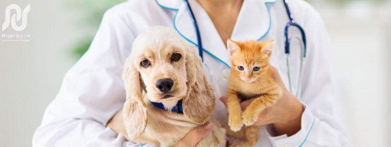 بیمه حیوان خانگی