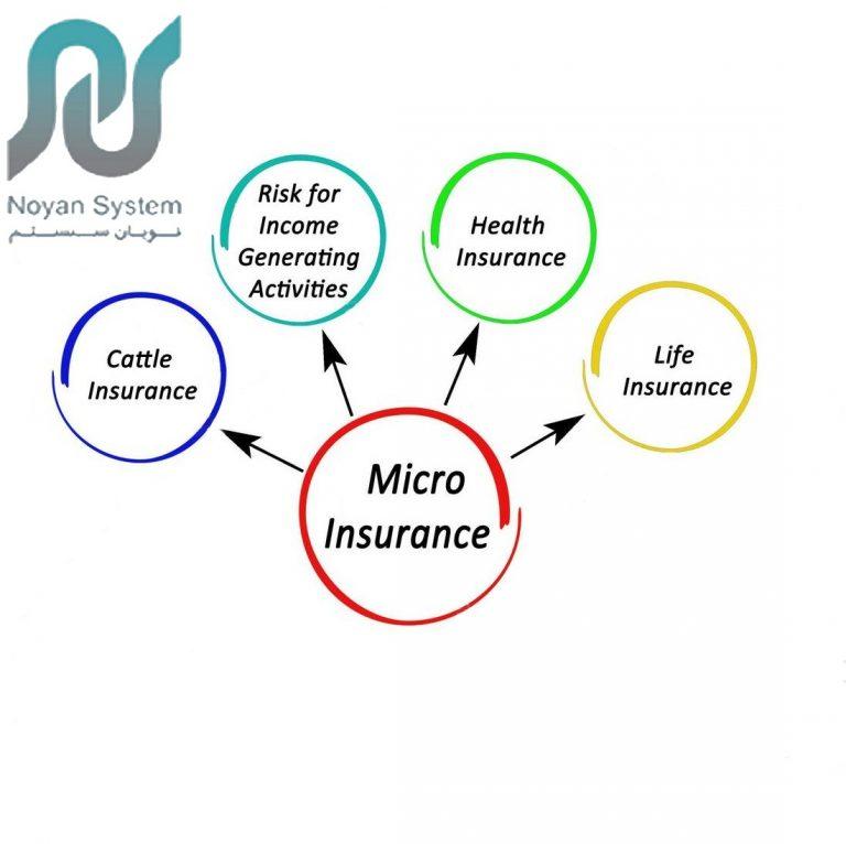 نقش بیمه نامه های خرد در توسعه اقتصادی کشورها